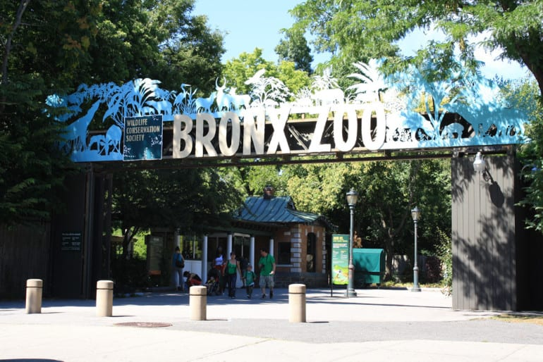 Bronx Zoo Hours New Restaurants In Portsmouth Nh