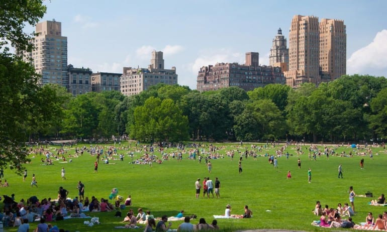 central-park-new-york-sheep-meadow